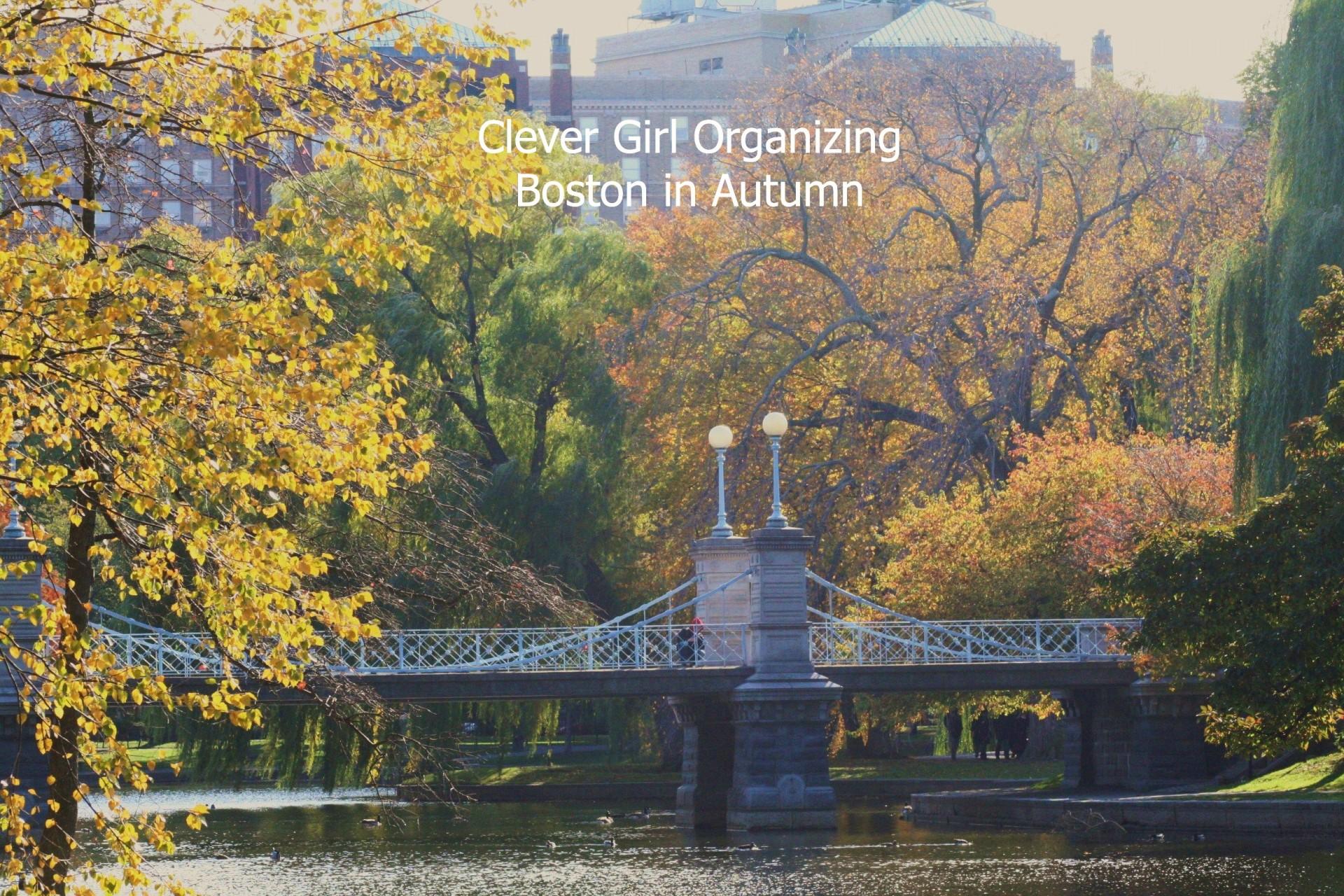 boston autumn wm