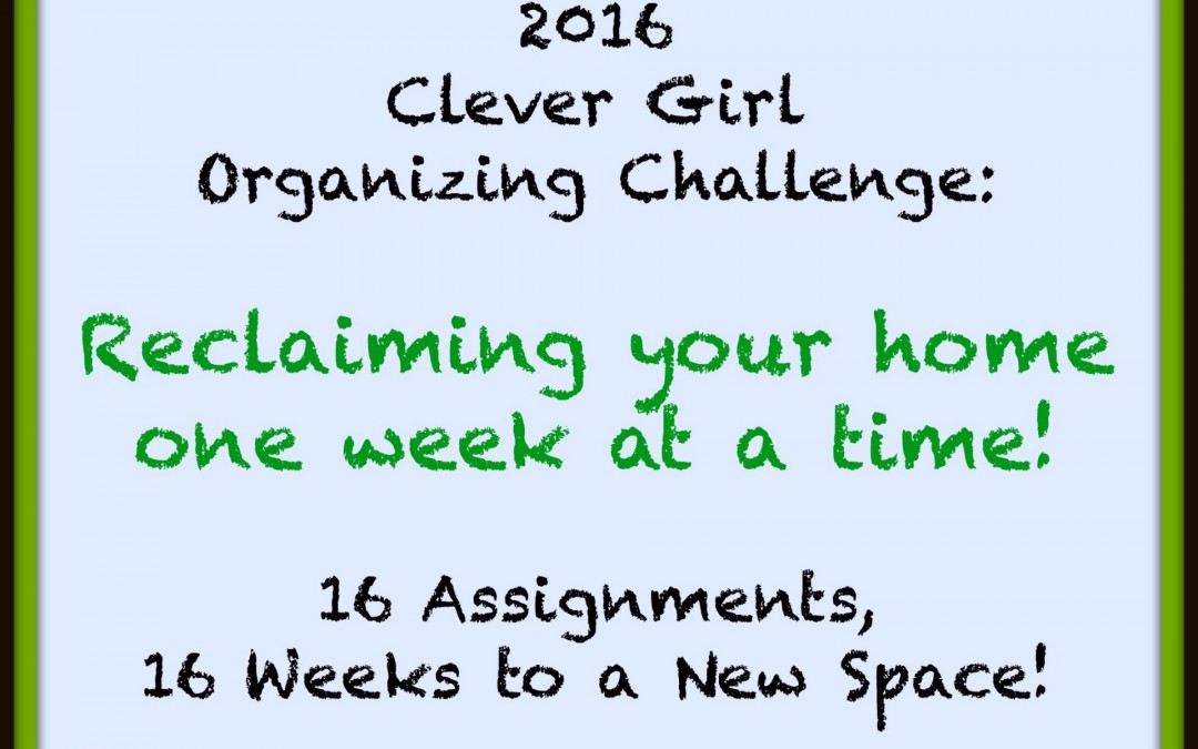 2016 Clever Girl Organizing Challenge: All 16 Weeks, Wrapped Up!