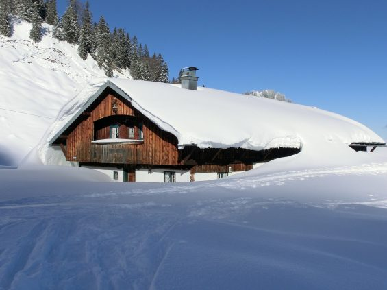 snowed in shelter in place
