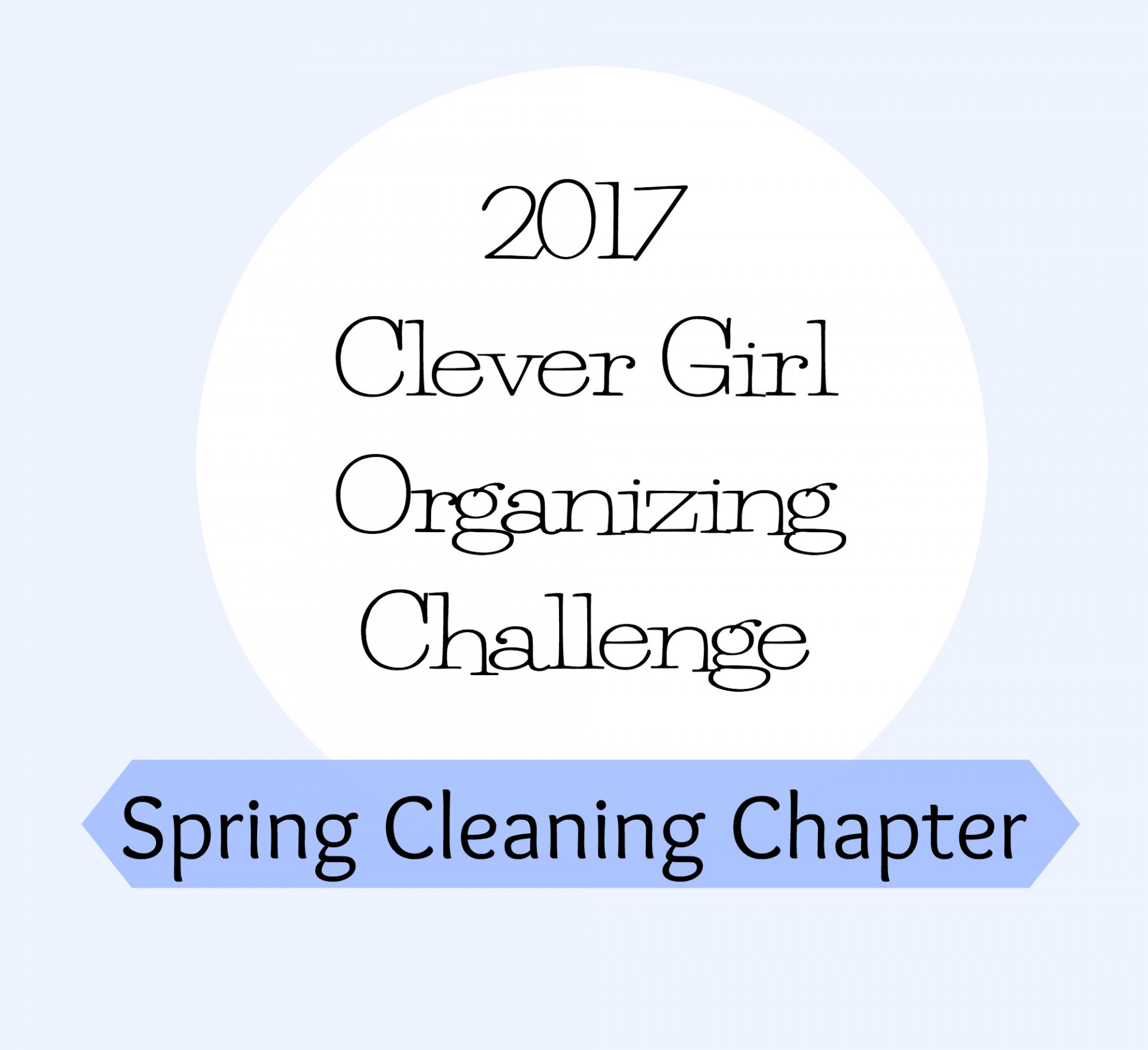Spring Cleaning Organizing Challenge