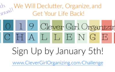 Announcing the 2019 Clever Girl Organizing Challenge!