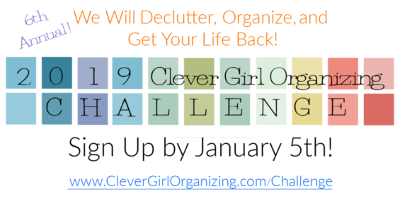 2019 Clever Girl Organizing Challenge